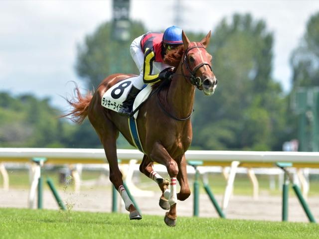北村友一騎手との新コンビで臨むラッキーライラック(写真は2017年新馬戦優勝時、撮影:小金井邦祥)
