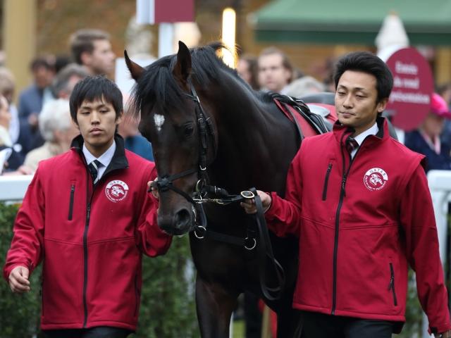 フランスの小林智厩舎に移籍するジェニアル(写真は2018年フォレ賞出走時、撮影:高橋正和)
