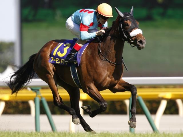 史上5頭目の牝馬3冠を狙うアーモンドアイは6枠11番(撮影:下野雄規)