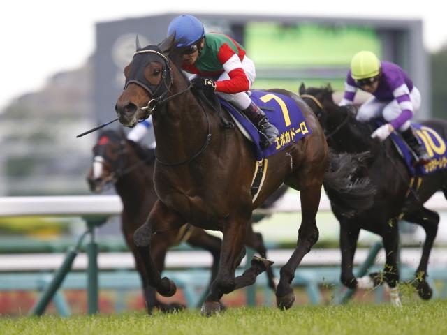 ダービー馬不在の菊花賞、エポカドーロが2冠を狙う(撮影:下野雄規)
