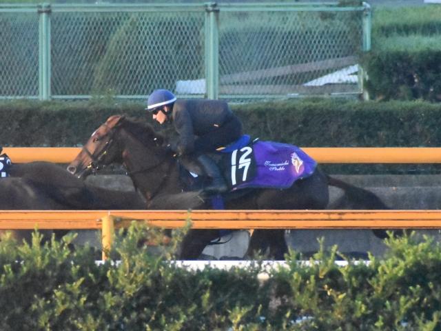 新馬としては破格の時計を出したサヴォワールエメ(撮影:井内利彰)