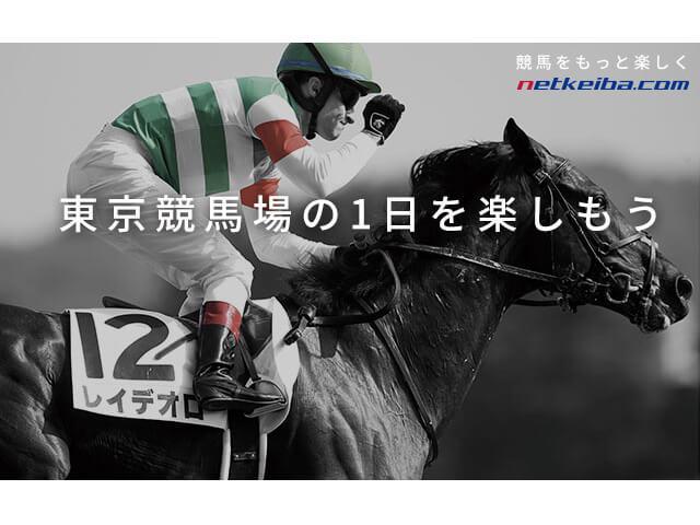 東京競馬場ゲストルームで競馬観戦を楽しもう!