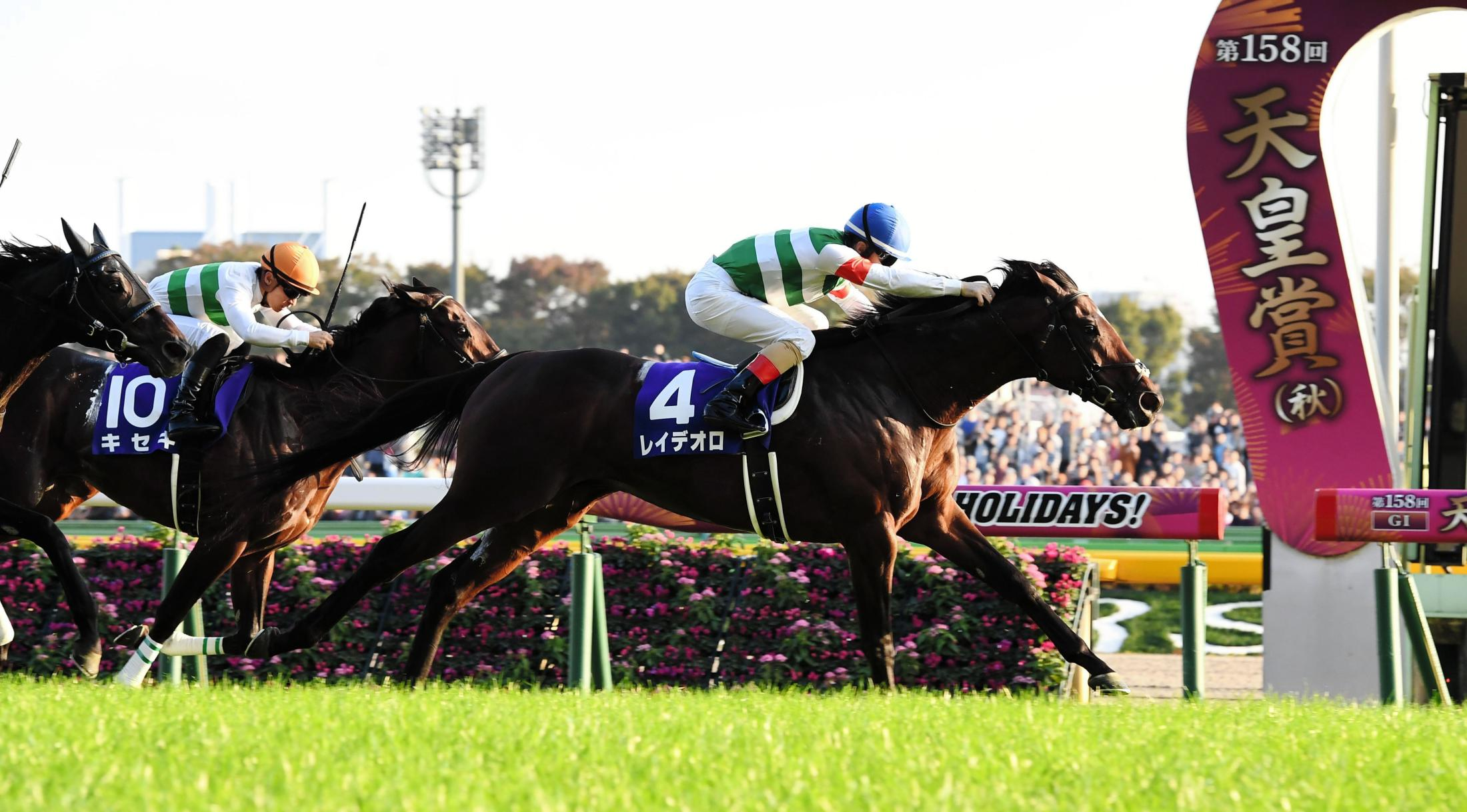 天皇賞(秋)を制したレイデオロの次戦が有馬記念に決まった