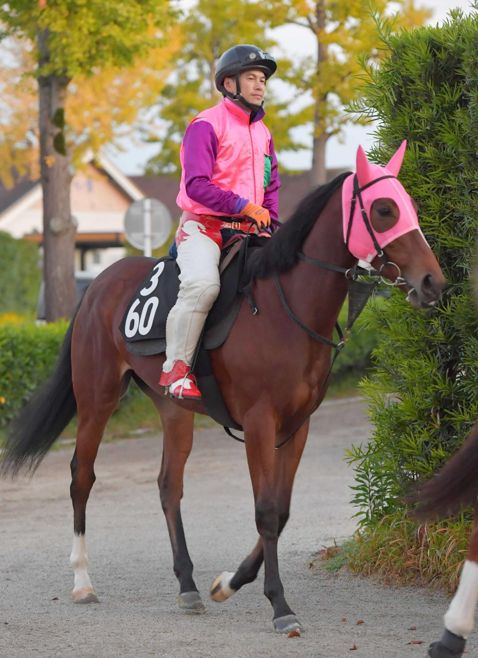 期待高まる厩舎ゆかりの血統馬コパカティ