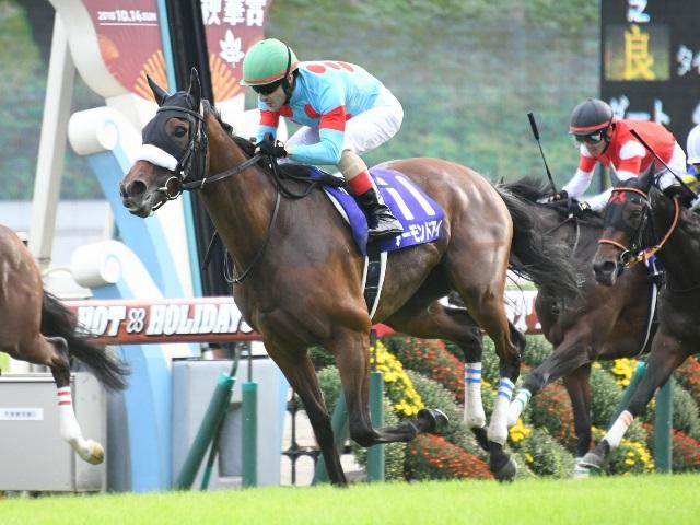 アーモンドアイが勝利した秋華賞。今年のエリザベス女王杯出走馬はカンタービレのみ