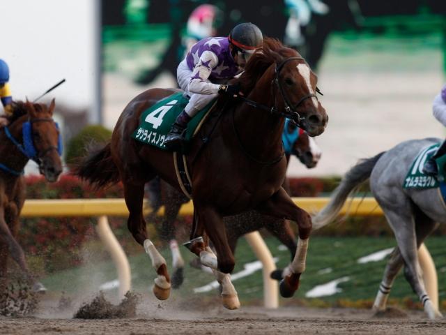 戸崎圭太騎手騎乗のサンライズノヴァが勝利(撮影:下野雄規)