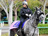 【マイルCS】アエロリット牡馬撃破再現だ 菊沢師、成長を実感