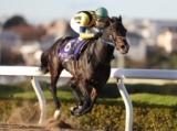 【浦和記念】オールブラッシュが捲って快勝 久々の重賞V/地方競馬レース結果