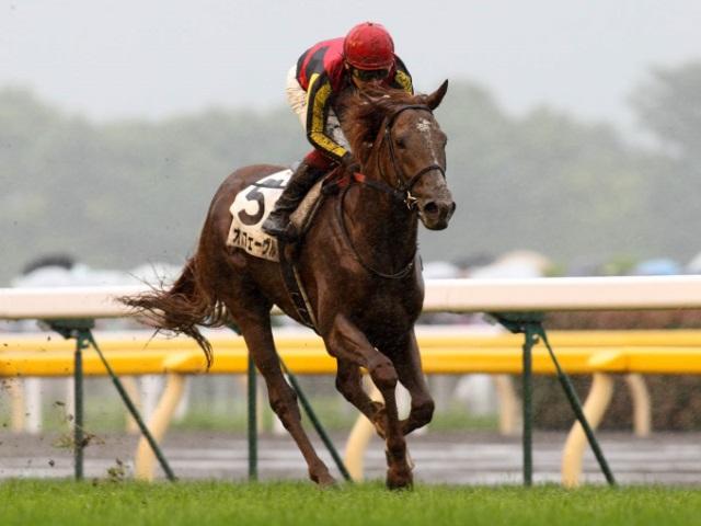 第11競走で行われた2011年の日本ダービー、優勝馬はオルフェーヴル(撮影:下野雄規)