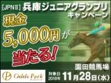 【オッズパーク】兵庫ジュニアグランプリキャンペーンで現金を100名様にプレゼント!