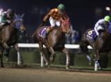 【川崎・ローレル賞】アークヴィグラスが重賞4連勝 ホウショウレイルは5着/地方競馬レース結果