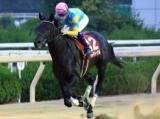 【兵庫ジュニアグランプリ】JRAデルマルーヴルが突き抜け、3連勝で重賞初V/地方競馬レース結果