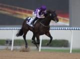 【海外競馬】ドバイで18.5馬身差圧勝のメンデルスゾーンが引退