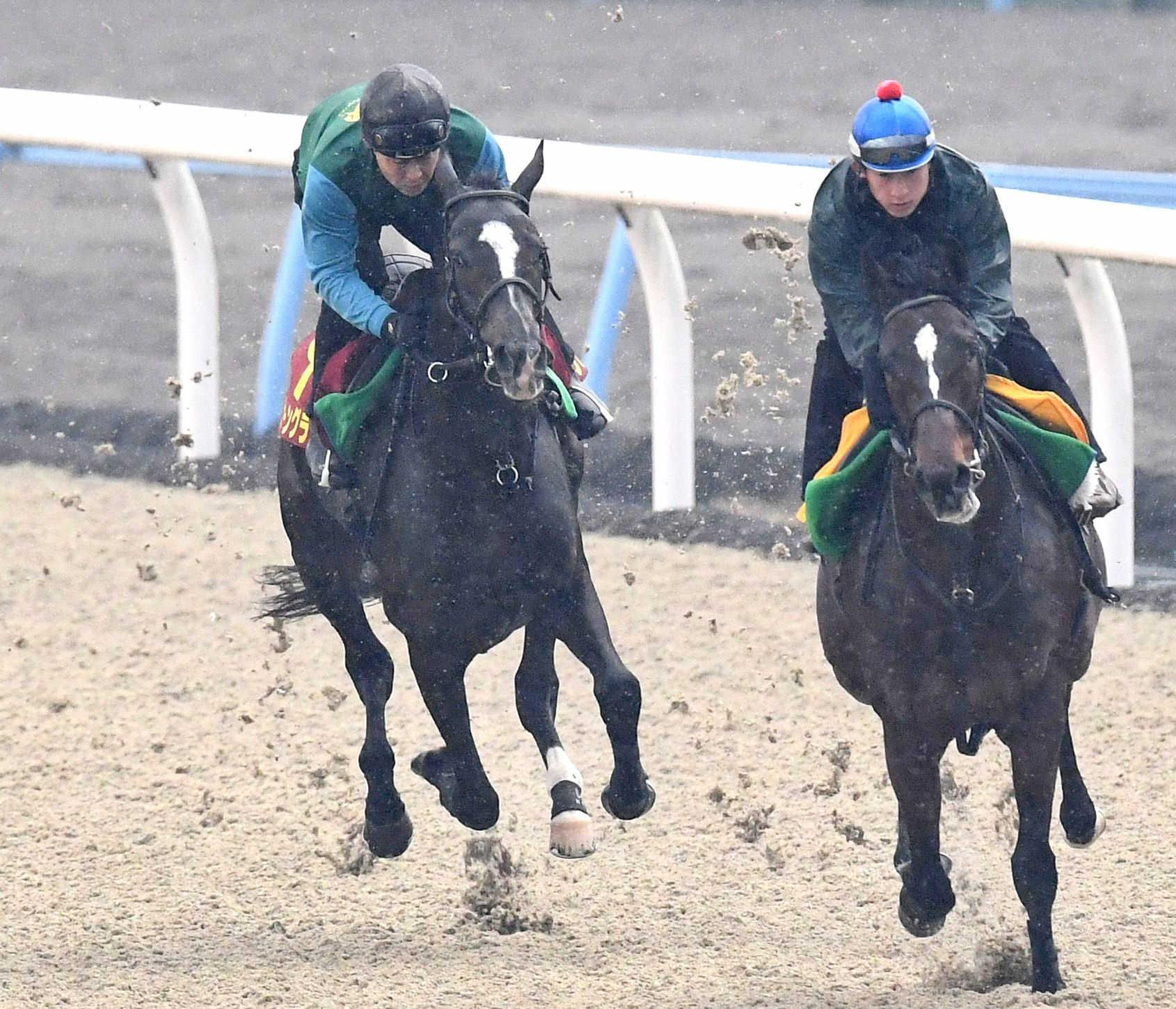 鋭い末脚を見せたシェーングランツ(左)=撮影・園田高夫