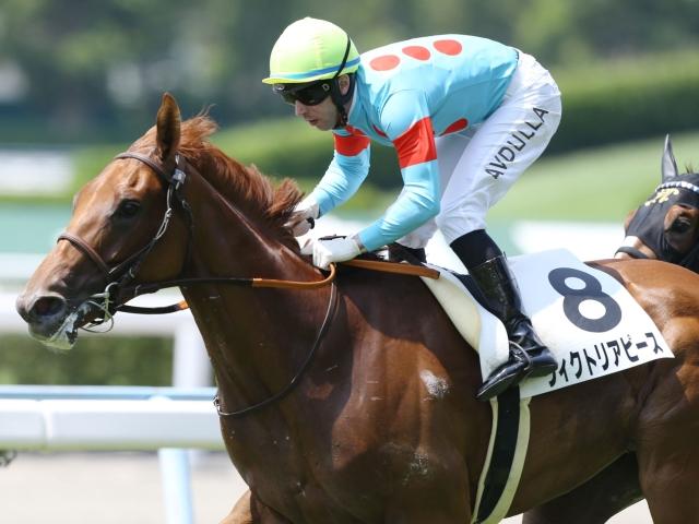 屈腱炎を発症したヴィクトリアピース(写真は2018年新馬戦優勝時)