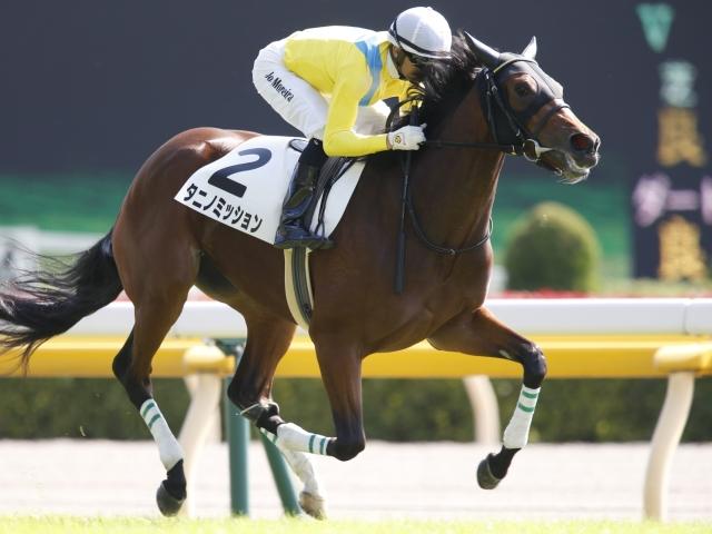 抽選を突破したウオッカの娘タニノミッション(写真は2018年新馬戦優勝時、撮影:下野雄規)