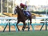 【有馬記念2018】競馬ファンが選ぶ「平成最強の有馬記念馬」は? アンケート中間発表!