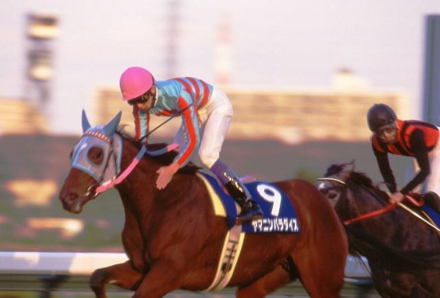 1994年のJRA賞最優秀3歳牝馬ヤマニンパラダイス