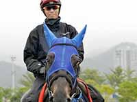 【香港カップ】サングレーザー 名手モレイラを背にG1初制覇狙う!