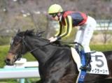 【メイクデビュー阪神レース後コメント】ティグラーシャ C.デムーロ騎手ら