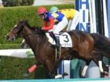 【2歳500万下】(阪神6R) ヴァニラアイスが好位追走から脚を伸ばして勝利