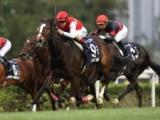 【香港C】ディアドラ、サングレーザー、ステファノス陣営のレース後コメント