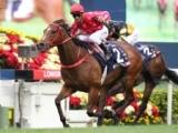 【香港スプリント】ミスタースタニングがロードカナロア以来の連覇達成、ファインニードルは8着/海外競馬レース結果