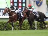 【香港国際競走】JRA発売の売上は4レース合計で31億1000万9900円、昨年超える