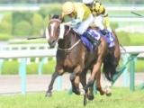 【海外競馬】ワーザーが引退 宝塚記念2着の香港馬