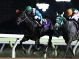 【船橋・クイーン賞】伝統の牝馬重賞、プリンシアコメータ連覇を狙う/地方競馬見どころ