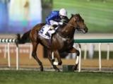 【JRA】今年の欧州年度代表馬の主戦O.マーフィー騎手 土日で計15鞍の騎乗予定