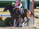 【地方競馬】東京大賞典の選定馬 スマートレイアー回避でエイコーンが繰り上がり