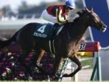【JRA】朝日杯FS、牝馬グランアレグリアが前日1番人気/本日の注目ポイント