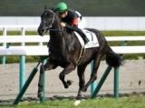 【阪神5R新馬戦】キングリスティアが5馬身差で圧勝/JRAレース結果