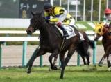 【阪神6R新馬戦】ミッドナイトラヴが逃げ切り新馬勝ち/JRAレース結果