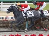 【中山5R新馬戦】ジャパンスウェプトが人気2頭の一騎打ちを制す/JRAレース結果