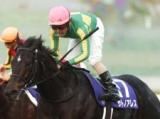 【阪神C】サトノアレスら、GI馬が5頭エントリー/JRAレースの見どころ