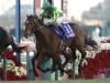 【有馬記念】オジュウチョウサンは武豊騎手、サトノダイヤモンドはアヴドゥラ騎手/JRA重賞想定騎手