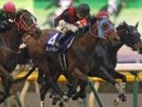 【阪神C】ジュールポレールはM.デムーロ騎手、レッドファルクスはH.ボウマン騎手/JRA重賞想定騎手