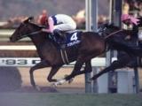 【有馬記念】競馬史に残る中363日のV トウカイテイオー奇跡の復活/平成有馬記念列伝(1993年)