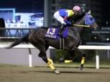 【地方競馬】東京大賞典の選定馬 ヒガシウィルウィン・リッカルドらの名前が消え、ヤマミダンスらが新規追加