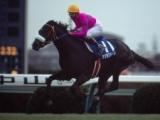 【有馬記念】シャドーロールの怪物・ナリタブライアンがここでも圧勝!/平成有馬記念列伝(1994年)