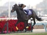 「有馬記念で有終の美を飾った最も印象深いレース」は?