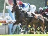 【JRA】ルメール騎手、年間最多勝記録へ向けJRA最終日は8鞍の騎乗
