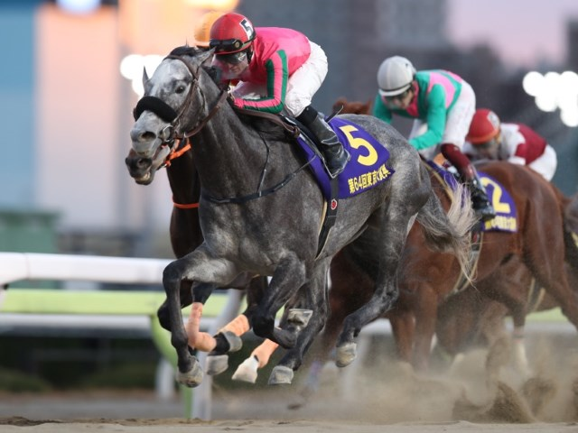 3歳馬オメガパフュームが東京大賞典を制覇した(撮影:高橋正和)