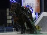 【ばんえい・ヤングCS】アオノブラックが接戦を制し重賞初V/地方競馬レース結果