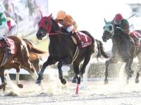 【笠松・ライデンリーダー記念】エムエスクイーンが圧倒的人気に応え無傷8連勝/地方競馬レース結果