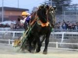 【ばんえい・帯広記念】オレノココロが大接戦を制す 3度目の帯広記念V/地方競馬レース結果