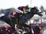 【海外競馬】アエロリット、米国遠征の鞍上はジェルー騎手に 新設G1ペガサスワールドCターフに出走