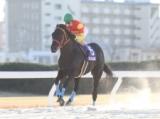 【名古屋記念】カツゲキキトキトが断然人気に応え快勝/地方競馬レース結果